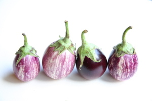 Eggplants_1